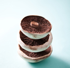 food photography portobello mushroom by luke cannon photography